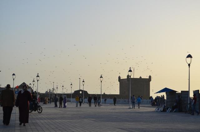 vue_port