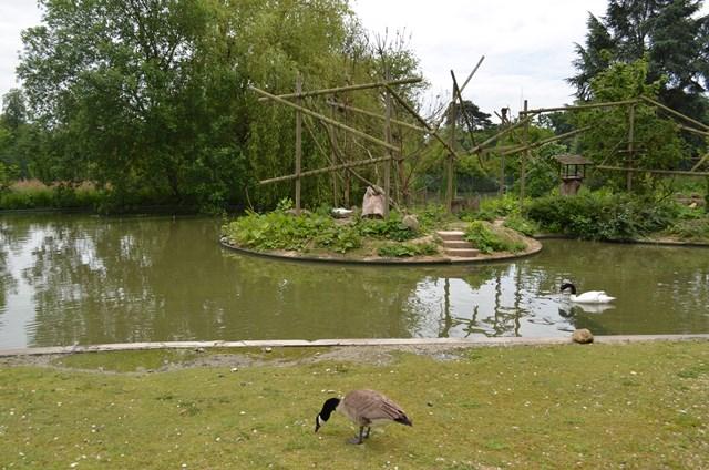 parc_zoologique_thoiry