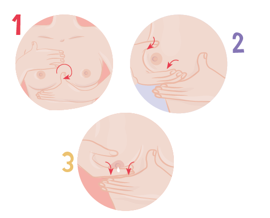 schéma-massage