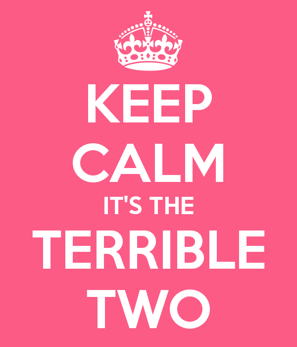 keep-calm-it-s-the-terrible-two-4